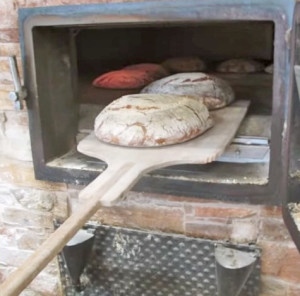 panediveroli