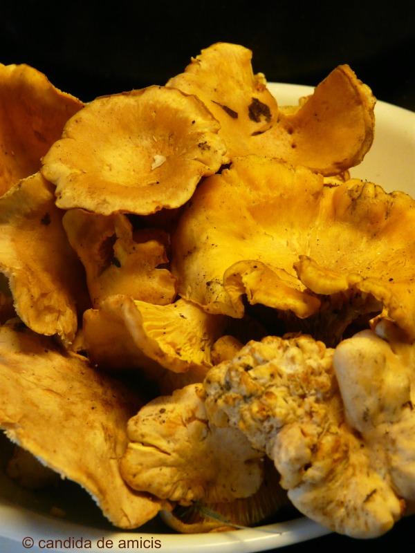Crema di ortaggi con galletti1