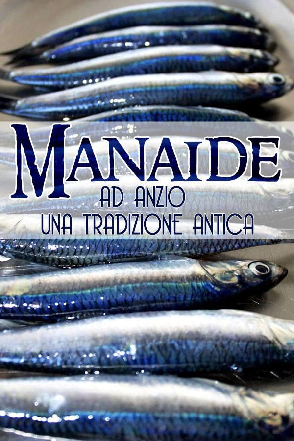 Manaide:ad Anzio una tradizione antica