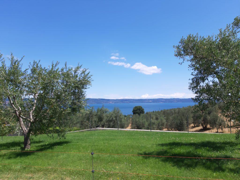 Villa Caviciana cantina Lago di Bolsena